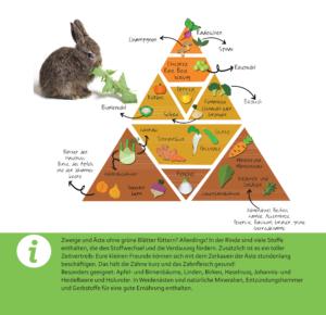 kaninchen füttern